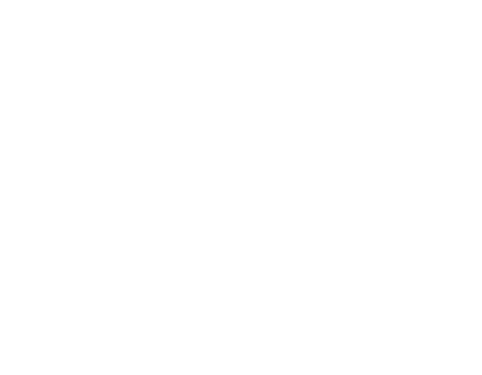 Joyful-Lights-Logo_White